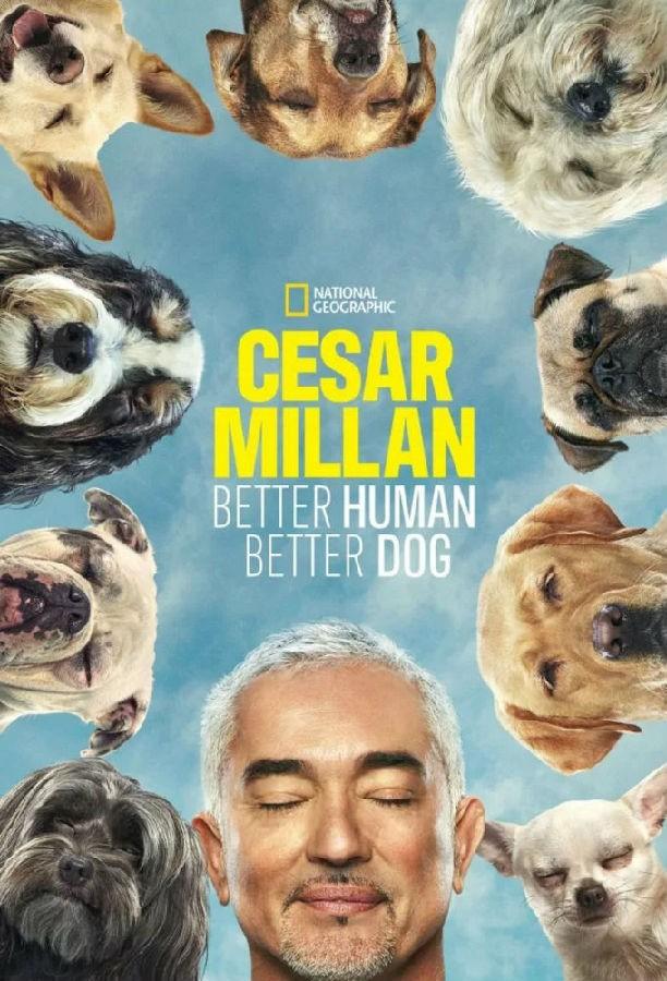[Cesar Millan: Better Human Better Dog 第一季][全集]4K|1080P高清